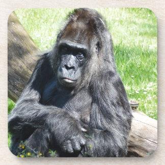 Gorilla Drink Coasters