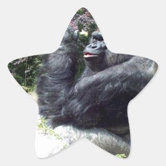 gorilla enjoy beautiful flower star sticker