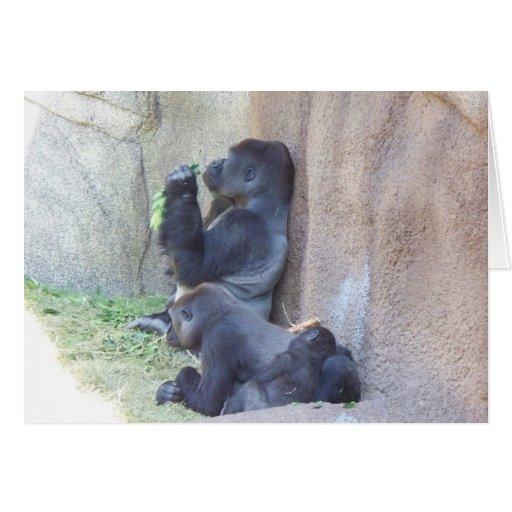 Gorilla Family Cards