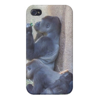 Gorilla Family iPhone 4/4S Covers