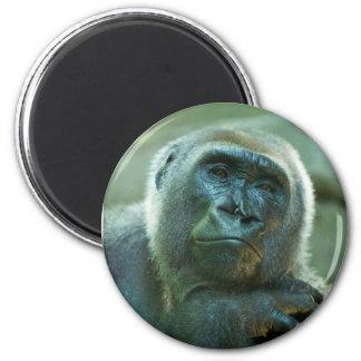 Gorilla - Fed Up 6 Cm Round Magnet