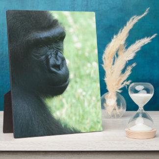 Gorilla Gaze  Plaque