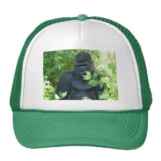 gorilla in the bush mesh hat