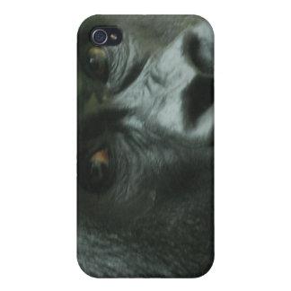 Gorilla in the Mist iPhone 4 Case