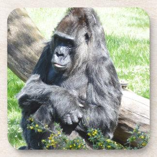 Gorilla Monkey Beverage Coasters