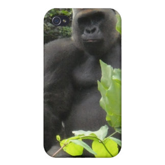 Gorilla Monkey iphone Case iPhone 4 Cover