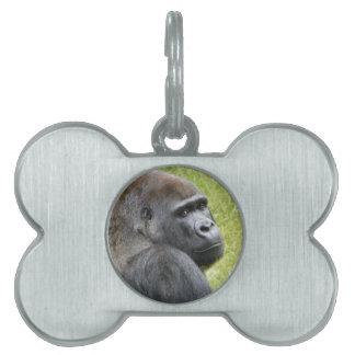 Gorilla Pet ID Tag