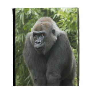 Gorilla Photo iPad Folio Cover