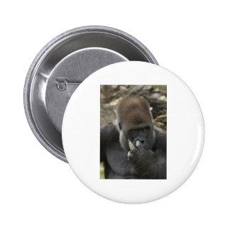 gorilla picking his nose - eeeewwwwwwww! 6 cm round badge