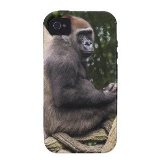 Gorilla Portrait iPhone 4 Cases