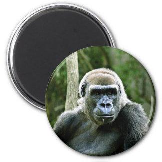 Gorilla Profile Magnet Fridge Magnets