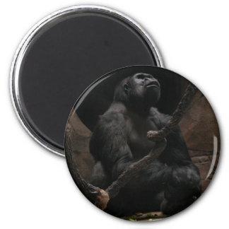 Gorilla /Round Magnet
