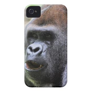 Gorilla say Case-Mate iPhone 4 case