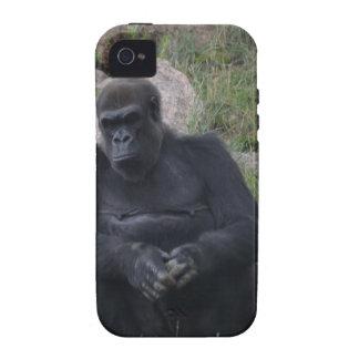 Gorilla sitting Case-Mate iPhone 4 cases