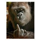 Gorilla Tall Man Postcard