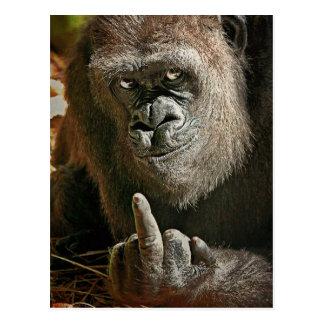 Gorilla Tall Man Post Cards