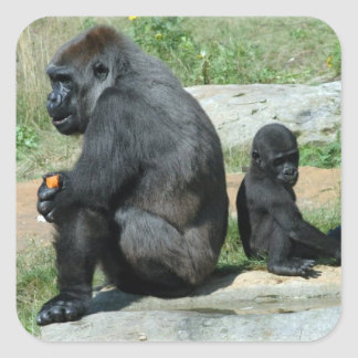 Gorilla Time Out Stickers