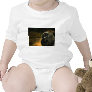 Gorilla Baby Bodysuits