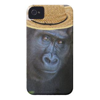 gorrilla in a straw hat Case-Mate iPhone 4 case