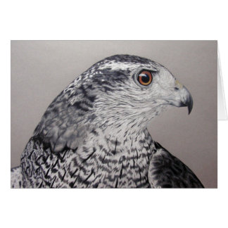 Goshawk Card