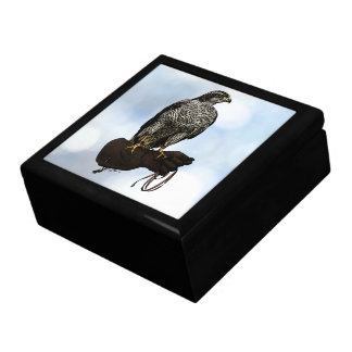 Goshawk on Glove Gift Box