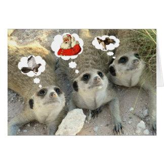 Goshawk? Santa! Eagle? - Seasons Greetings Card