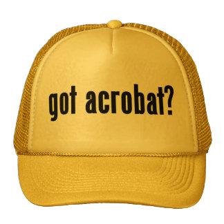 got acrobat? hats