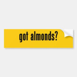 got almonds? bumper stickers