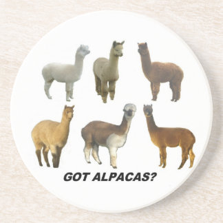 Got alpacas? coaster