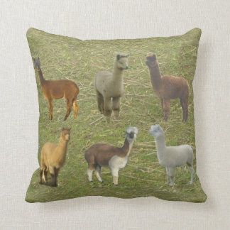 Got Alpacas? Cushion
