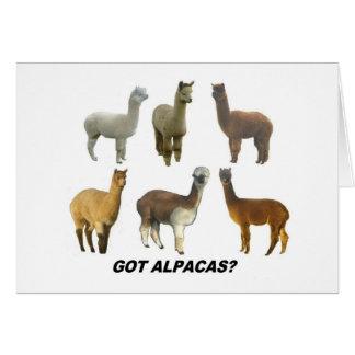 Got Apacas? Cards