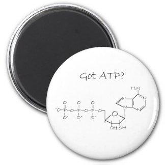 Got ATP? Magnet