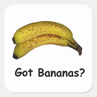Got Bananas Square Sticker