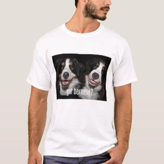 got bernese? T-Shirt