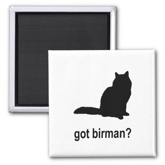 Got Birman? Square Magnet
