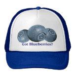 Got Blueberries? Trucker Hat