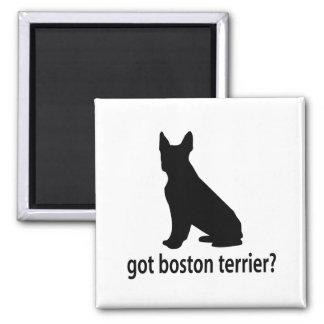 Got Boston Terrier Square Magnet