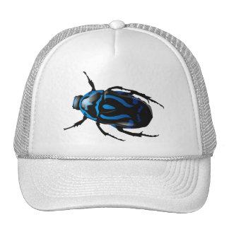 Got Bugs-Wild Colored Beetle Cap