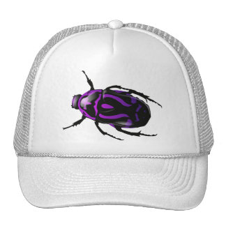 Got Bugs-Wild Colored Beetle Trucker Hats
