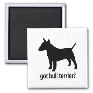 Got Bull Terrier Square Magnet