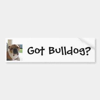 Got Bulldog? Bumper Sticker