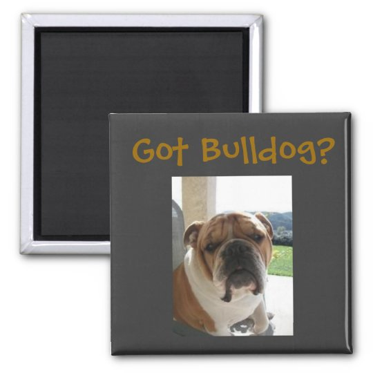 Got Bulldog? Magnet