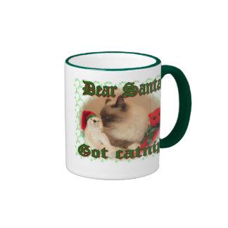 Got Catnip? Coffee Mug