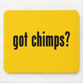 got chimps? mouse pad