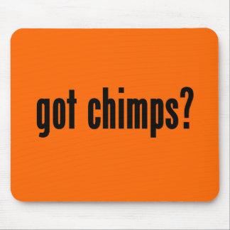 got chimps? mouse pads