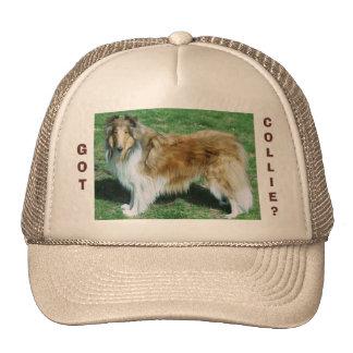 GOT, COLLIE? CAP