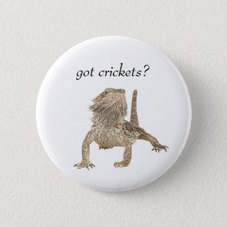Got crickets 6 cm round badge