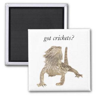 Got crickets square magnet