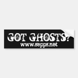 GOT GHOSTS?, www.sepps.net Bumper Sticker