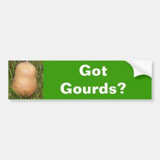 Got Gourds? Bumper Sticker